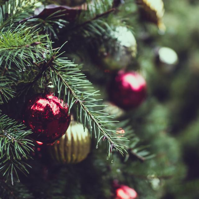 Student Christmas Cutbacks