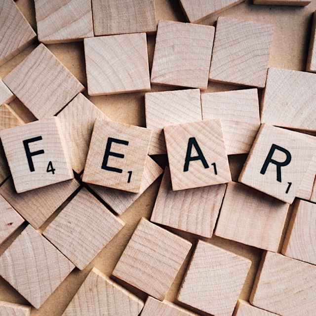 Overcoming Our Fears of Public Speaking