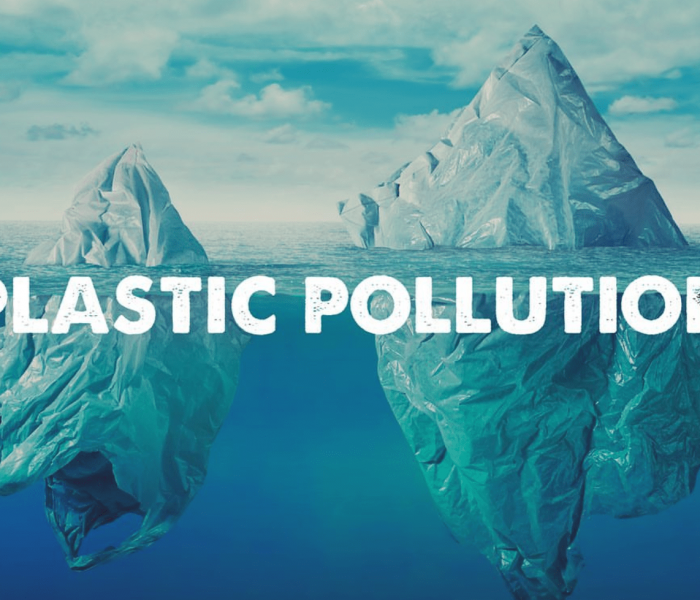 YOU can make a difference – prevent plastic pollution with AWdF