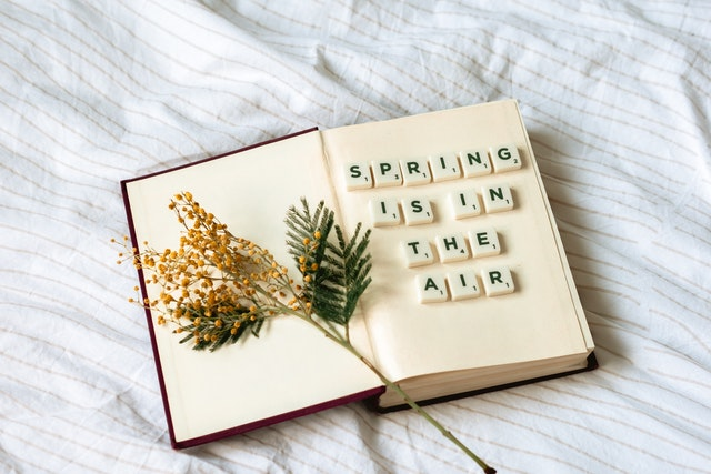 My Guide to Spring in the Garden